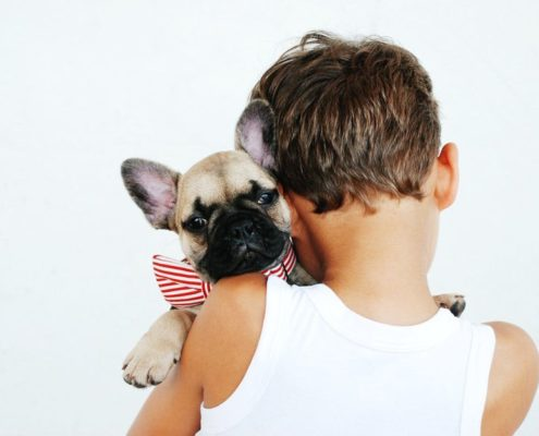 Boy in a white shirt is hugging a beige french bulldog while his back is turned to the camera.