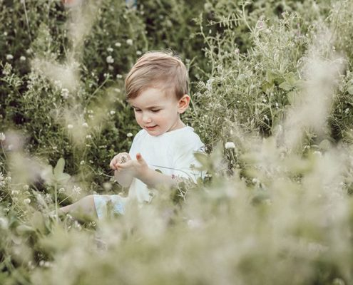 Boy sitting in high grass