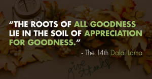 Gratitude quote by Dalai Lama